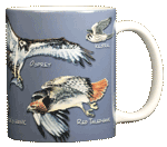 Birds of Prey Ceramic Mug - Back