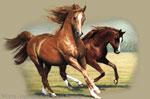 "Running Horses 2"" X 3"" Magnet"