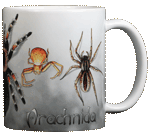 Spiders Ceramic Mug - Back