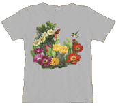 Cactus Flowers Ladies Scoop Neck T