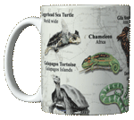 Reptiles of the World Ceramic Mug