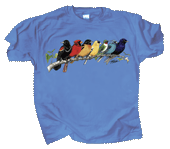 Songbird Spectrum Adult T-shirt