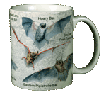 Bats of NA Ceramic Mug - Back
