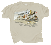 Shorebirds Adult T-shirt