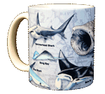 Sharks of the World Ceramic Mug - Front