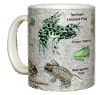 Frogs of NA Ceramic Mug - Front