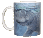 Manatee Gathering Ceramic Mug