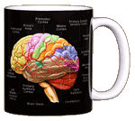 Brain Ceramic Mug - Back