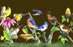 "Backyard Birds 2"" X 3"" Magnet"