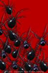 "Arachnophobia 2"" X 3"" Magnet"