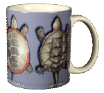 Turtle Circle Ceramic Mug - Back