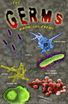 "Germs 2"" X 3"" Magnet"