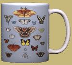 Lepidoptera Ceramic Mug - Back