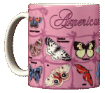 Butterfly ABC Ceramic Mug