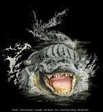 Gator Encounter Adult T-shirt - Front