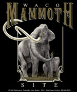 Mammoth Square Template