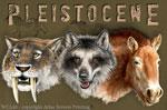 Pleistocene 2