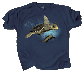 Loggerhead Turtles Adult T-shirt