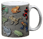 Frogs of the Americas Ceramic Mug - Back