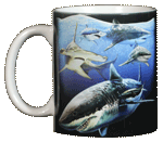 Sharks! Ceramic Mug - Front test8