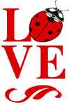 "Love Bug 2"" X 3"" Magnet"