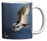 Osprey Ceramic Mug - Back
