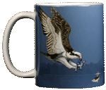 Osprey Ceramic Mug test8
