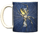 Big Spider Ceramic Mug - Front