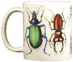 Beetle Circle Ceramic Mug
