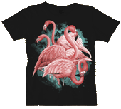 Flamingo Dancers Ladies Scoop Neck Tee