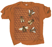 Bee Hive Adult T-shirt - Front