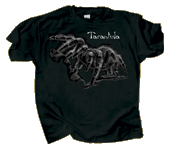 Discharge Tarantula AD Comfort Colors T-shirt