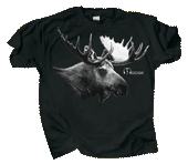 Discharge Moose Adult Comfort Colors T-shirt - Front