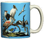 Florida Birds Ceramic Mug - Back
