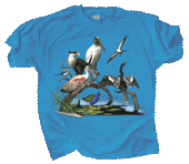 Florida Birds Adult T-shirt - Front
