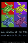 Imagine Sea Turtles 2