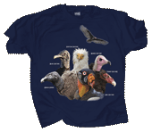Vultures Adult T-shirt - Front