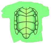 Sea Turtle Shell Youth T-shirt