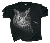 Discharge Owl Adult Comfort Colors T-shirt - Front