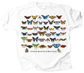 Ultimate Butterfly & Moth Guide Youth T-shirt