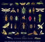 Ultimate Insect Guide Adult T-shirt