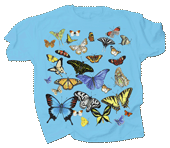 Butterfly Glow Adult T-shirt