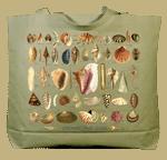 Ultimate Seashell Guide Canvas Tote