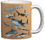 Shark School Ceramic Mug - Back