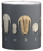 Trilobites Ceramic Mug - Center