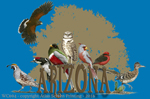 "Arizona Birds 2"" X 3"" Magnet"