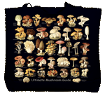Ultimate Mushroom Guide Canvas Tote test8