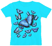 Morpho Kaleidoscope Ladies Scoop Neck