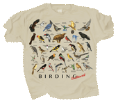 Birding Southwest Adult T-shirt