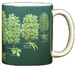 Trees of North America Ceramic Mug - Back